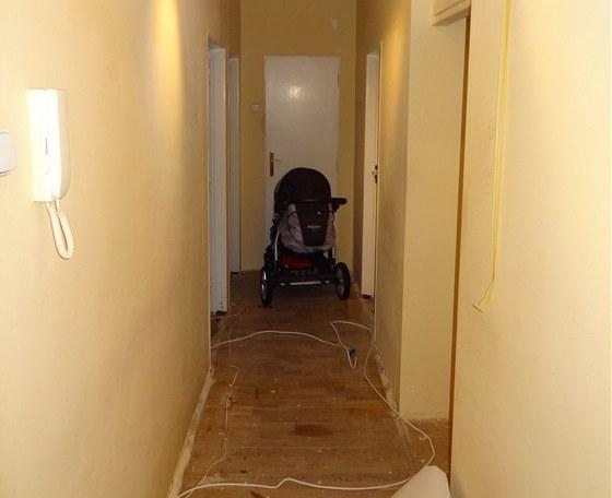 Pohled z chodby: po levé straně jsou dveře do ložnice a dětského pokoje, na