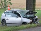 Nehoda u Nových Homolí na Českobudějovicku. Po střetu nákladního auta s osobním