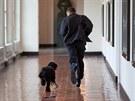 Barack Obama se svým psem v Bílém domě