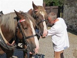 Zájemci o svezení se mohou podívat na strojení koní.