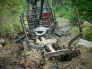Zapadlá vyvážecí souprava v Národním parku Šumava v okolí Modravy.