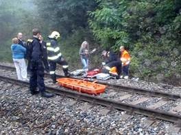Vlak srazil na trati mezi Karl�tejnem a Berounem �lov�ka. (5. z��� 2013)