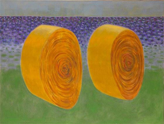 Z výstavy Jiřího Sopka v Galerii Gate