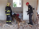 Interiéry domu prohledali i kynologové se psy cvičenými na vyhledávání osob.
