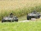 Rakousk� policie nasadila do akce proti brut�ln�mu pytl�kovi, jen� zast�elil