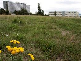 Firma usiluje o změnu územního plánu tak, aby na volném pozemku nad Masarykovou...