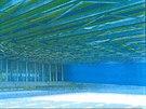 Takto by mohl zimní stadion v Teplicích v budoucnu vypadat.