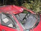 Řidič za volantem usnul a havaroval. Neprobudil ho ani sedmiletý syn.