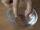 Do misky nalij vodu a na její hladinu zhruba doprostřed umísti korkový plátek...