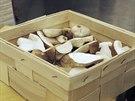 Vyzkoušejte uplatnit nasbírané hříbky při přípravě italského rizota.