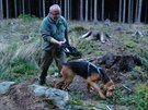 Desetiletý bloodhound Forrest Gump