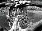 Ami Vitale: Alio Balde si drhne tělo před malou jámou která v období dešťů...