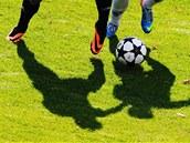 Fotbal (ilustra�ní snímek).