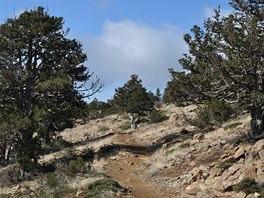 Na stezce Atalante Trail v kyperském pohoří Troodos