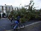 Na severu Londýna prudký vítr vyvrátil desítky stromů (28. října)