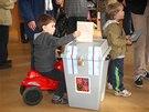 Lidé hlasují v předčasných volbách do Poslanecké sněmovny. (25. října 2013)