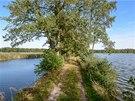 Hráz mezi rybníky Skutek a Dobrá vůle