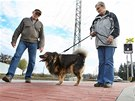 Chodci mířící na nádraží ve Studénce využijí nové komunikace. (30.10.2013)