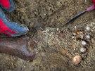Archeologické vykopávky v Pernerově ulici v pražském Karlíně odhalily tisíce...