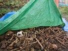 Hromada kostí padlých vojáků z doby Marie Terezie, které archeologové nalezli v...