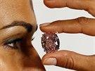 Růžový diamant v Ženevě vydražili za 1,5 miliardy. Je to nový rekord.