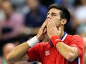 DÍKY. Novak Djokovič zdraví srbské diváky ve finále Davis Cupu.