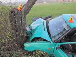 Snímek z nehody felicie, jejíhož řidiče na silnici mezi Budětskem a obcí Konice