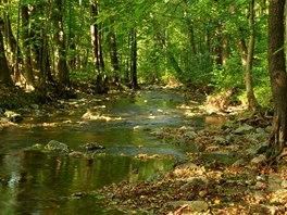 Divoký a rychlý tok Krounky střídají klidnější úseky.