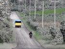 Popel ze sopky pokryl stromy až v sedmdesátikilometrové vzdálenosti od vulkánu...