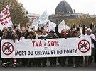 20% DPH = smrt kon� a pon�k�, stoj� na transparentu (Pa��, 24. listopadu 2013).