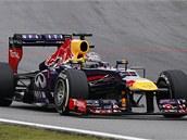 Sebastian Vettel na trati p�i Velk� cen� Braz�lie. N�meck� pilot dev�tou v�hrou