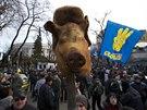 Prasečí hlava jako symbol toho, co si demonstranti v Kyjevě myslí o vládě a...