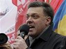 Šéf ukrajinské partaje Svoboda Oleh Tjahnybok řeční k davům v Kyjevě (5....