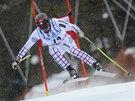 Sjezdař Ondřej Bank obsadil v obřím slalomu v Beaver Creeku 25. místo.