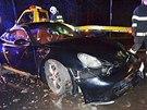 Hasiči vytahují luxusní vůz Porsche Cayman, který skončil v rybníku v Šenově u