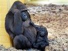 Moja se svou sedmiměsíční dcerou ve španělském zooparku Cabárceno