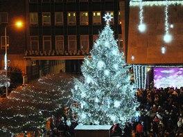 Vánoční strom města Ústí nad Labem letos stojí na Lidickém náměstí a stejně...