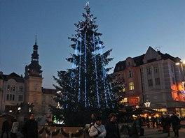 Vánoční smrk na ostravské Masarykovo náměstí doputoval z jesenické obce Dolní