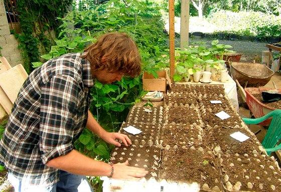 Kvalitní péče o nováčky v semenné školce. Jde vlastně o variaci našeho skleníku.