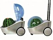 lednice na meloun