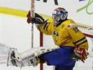 Švédský brankář Dansk slaví postup přes Rusko do finále juniorského MS.
