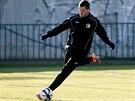 KANONÝR V AKCI Tomáš Necid už zase trénuje ve Slavii.