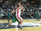 Momentka z utkání Maccabi Haifa - Nymburk.
