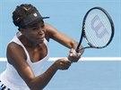 Venus Williamsová ve finále na turnaji v Aucklandu.