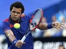 Francouzský tenista Jo-Wilfried Tsonga ve finále Hopmanova poháru.