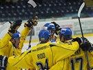 Ústečtí hokejisté se raduje z gólu