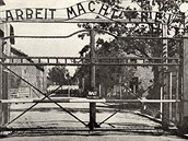 Nacistický koncentra�ní tábor Osv�tim - B�ezinka