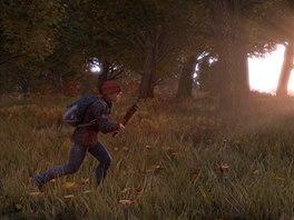 Obrázek ze samostatné verze hry DayZ
