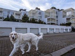 Bytový komplex v Praze - Troji, kde sídlí stěhovaná palestinská ambasáda (3....
