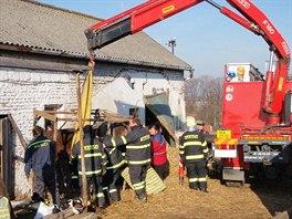 Hasiči pomáhali v bouzovské místní části Kovářov březí kobyle, která si zlomila...